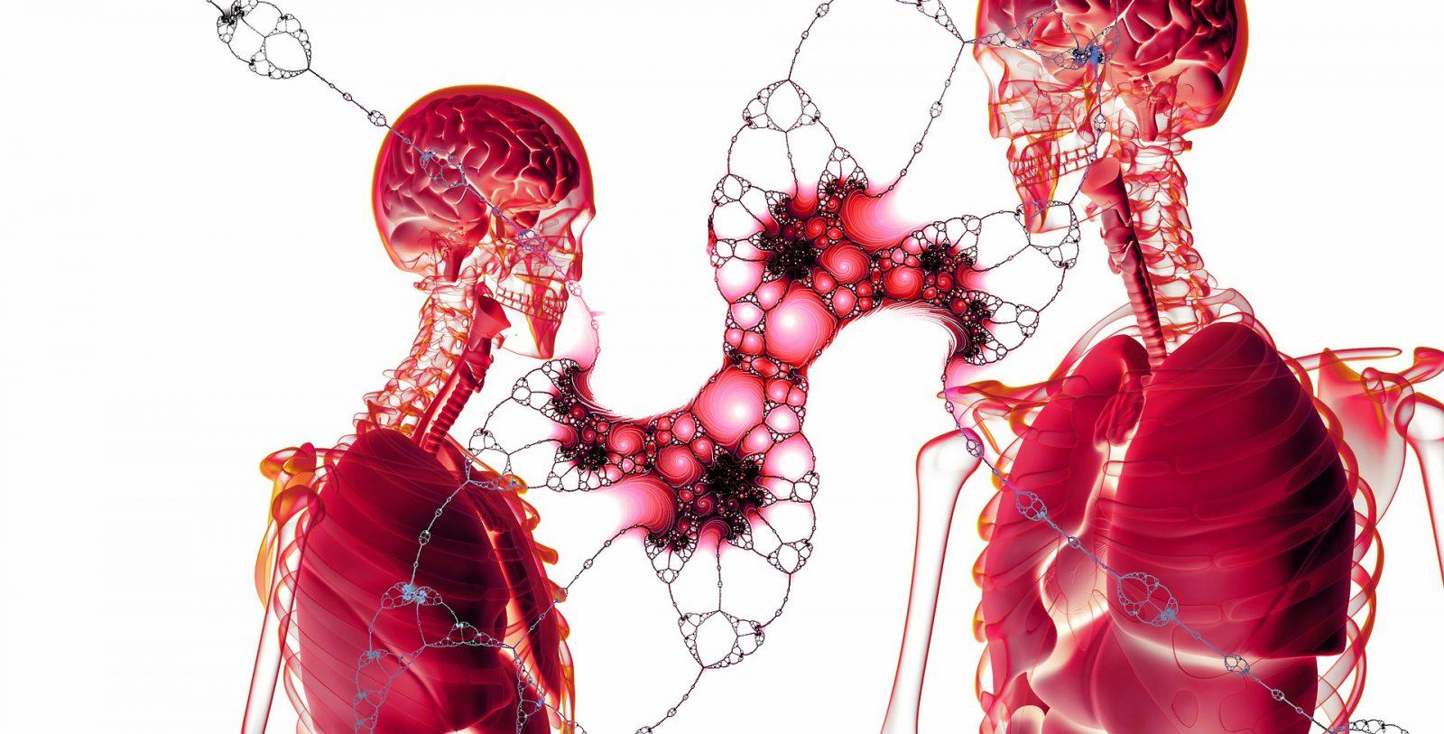 Improve your immunity - Symptoms and Illnesses
